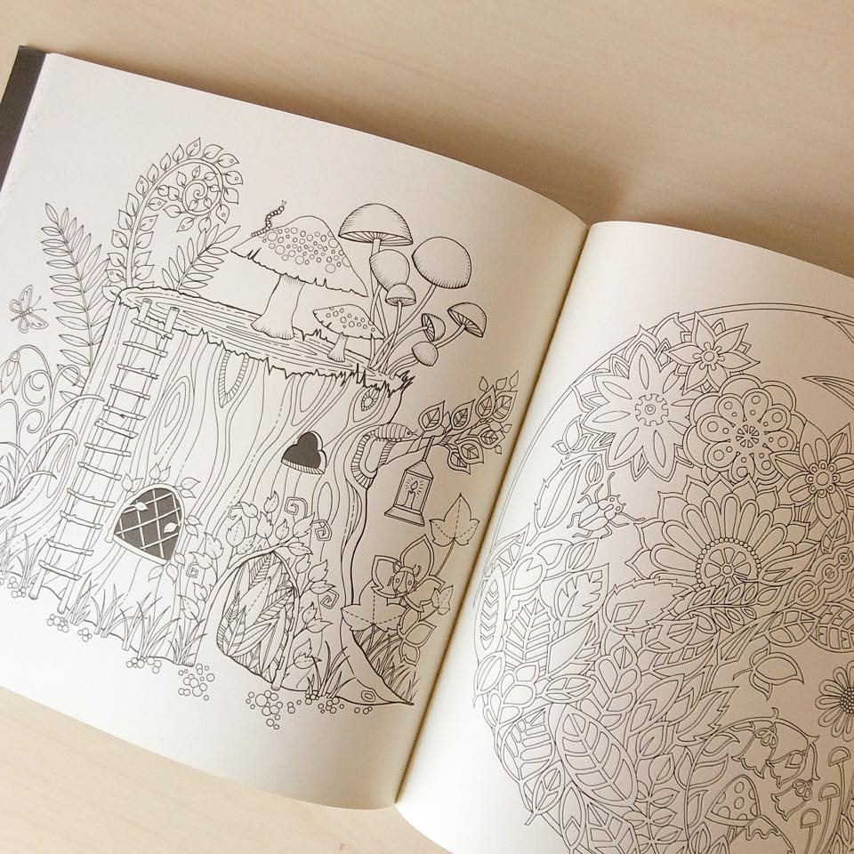 Gizemli Orman / Enchanted Forest